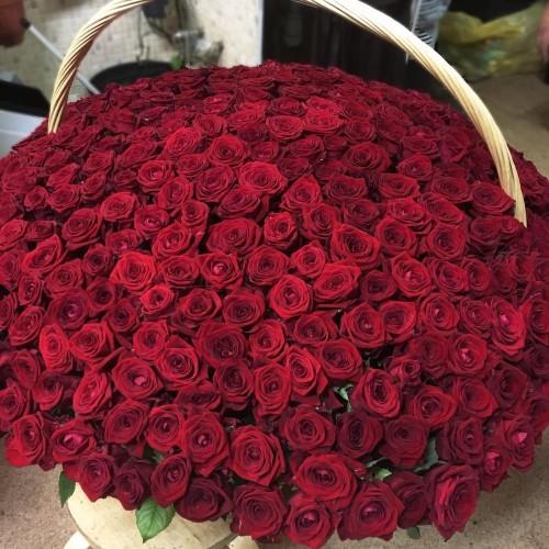 Купить на заказ 1001 роза с доставкой в Текели