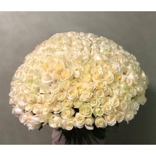 Купить на заказ 201 роза с доставкой в Текели