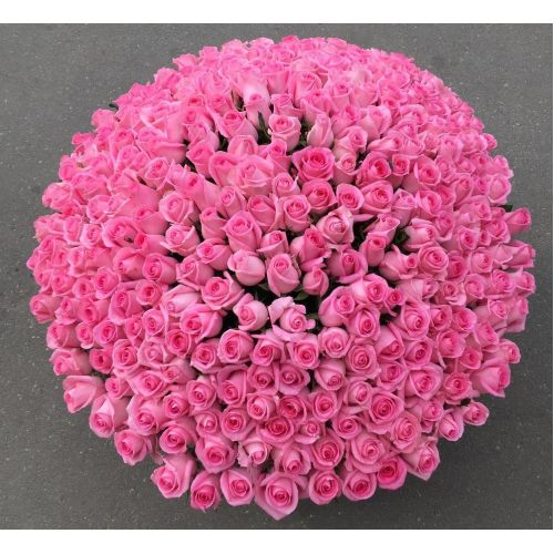 Купить на заказ 501  роза с доставкой в Текели