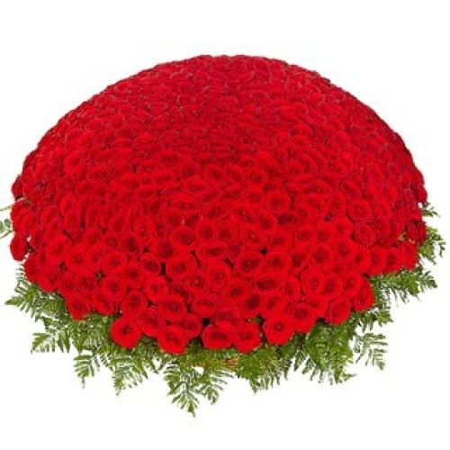 Купить на заказ 301  роза с доставкой в Текели